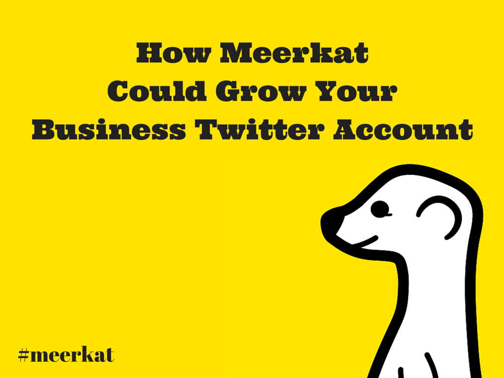 How Meerkat Could Grow Your Business Twitter